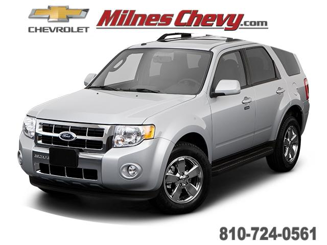 2009 Ford Escape Limited for sale in Imlay City, MI