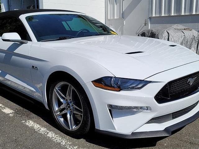 2019 Ford Mustang GT Premium for sale in Warrenton, VA