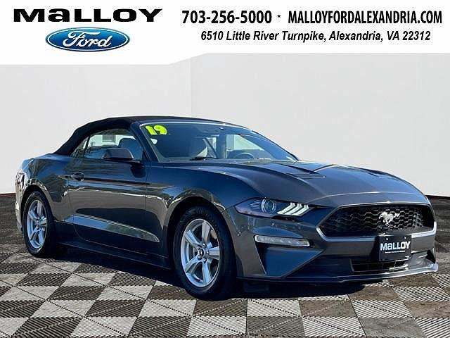 2019 Ford Mustang EcoBoost for sale in Alexandria, VA