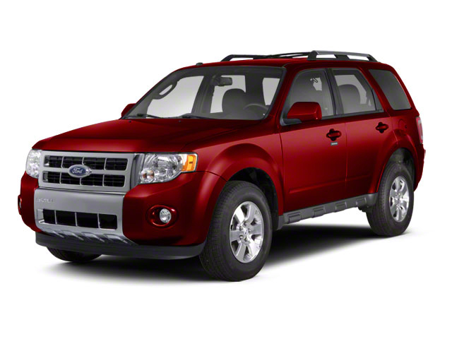 2010 Ford Escape XLT for sale in Chicago, IL