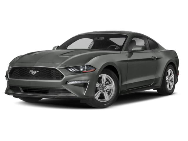2019 Ford Mustang ECOBOOST 2dr Car  NC
