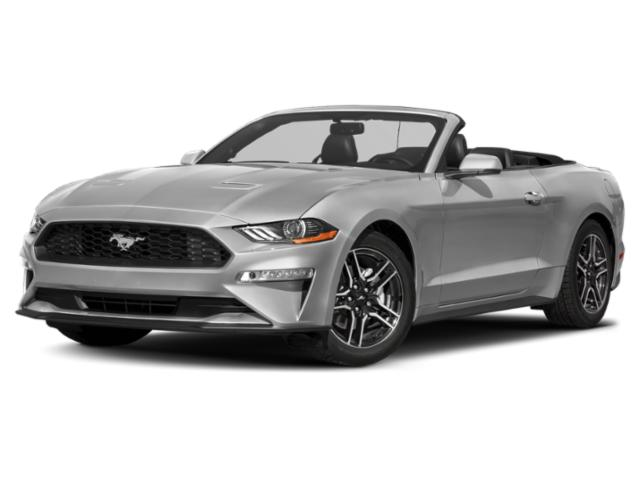 2020 Ford Mustang EcoBoost [15]